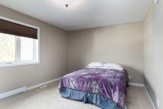 Photo 12: 381 Queen Street in Winnipeg: St James Residential for sale (5E)  : MLS®# 202025695