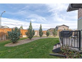 Photo 22: 100 SPRINGMERE Grove: Chestermere House for sale : MLS®# C4085468
