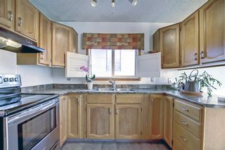 Photo 5: 317 Big Springs Court SE: Airdrie Detached for sale : MLS®# A1152002