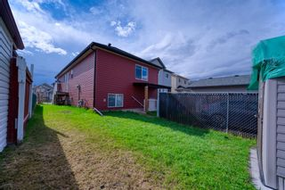Photo 42: 26 Saddlemont Way NE in Calgary: Saddle Ridge Detached for sale : MLS®# A1103479