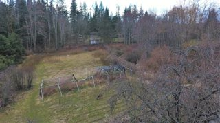 Photo 53: 1541 Croation Rd in Campbell River: CR Campbell River Central House for sale : MLS®# 870733