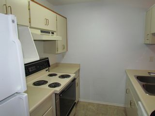 Photo 4: 210 2780 WARE Street in ABBOTSFORD: Central Abbotsford Condo for rent (Abbotsford)