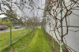 Photo 27: 4383 Majestic Dr in VICTORIA: SE Gordon Head House for sale (Saanich East)  : MLS®# 837692