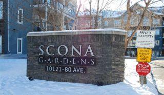 Photo 20: 428 10121 80 Avenue in Edmonton: Zone 17 Condo for sale : MLS®# E4229032