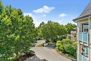 """Photo 19: 303 20145 55A Avenue in Langley: Langley City Condo for sale in """"BLACKBERRY LANE"""" : MLS®# R2609677"""