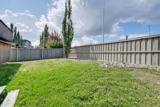 Photo 45: 6161 MAYNARD Crescent in Edmonton: Zone 14 House for sale : MLS®# E4259814