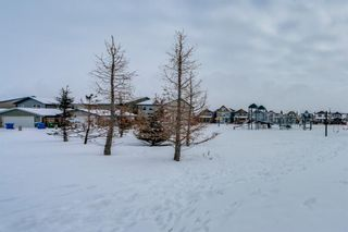 Photo 40: 65 Skyview Point Green NE in Calgary: Skyview Ranch Semi Detached for sale : MLS®# A1070707