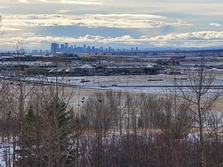 Photo 7: 262167 Range Road 293: Balzac Residential Land for sale : MLS®# A1119880