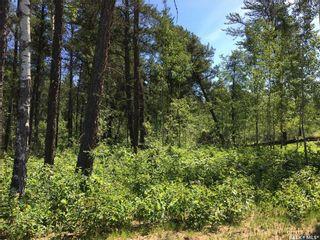 Photo 2: Prime Acreage Lot 3 Block U in Nipawin: Lot/Land for sale (Nipawin Rm No. 487)  : MLS®# SK868105
