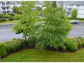 """Photo 17: # 219 33175 OLD YALE RD in Abbotsford: Central Abbotsford Condo for sale in """"Sommerset Ridge"""" : MLS®# F1314320"""
