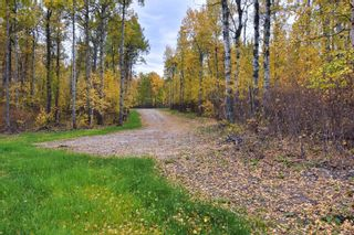 Photo 8: #9 North Pigeon Lake Estates: Rural Wetaskiwin County Rural Land/Vacant Lot for sale : MLS®# E4265016