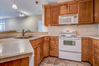 Photo 9: 2101 24 Hemlock Crescent SW in Calgary: Spruce Cliff Apartment for sale : MLS®# A1038232