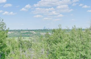 Photo 21: 4125 CAMERON HEIGHTS Point in Edmonton: Zone 20 House for sale : MLS®# E4251482