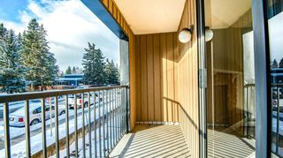 Photo 15: 1101 4001A 49 Street NW in Calgary: Varsity Apartment for sale : MLS®# A1114899
