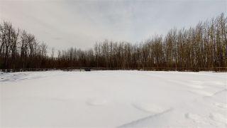 Photo 22: 15758 283 Road in Fort St. John: Charlie Lake House for sale (Fort St. John (Zone 60))  : MLS®# R2560695
