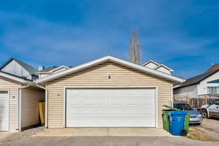 Photo 41: 165 Prestwick Rise SE in Calgary: McKenzie Towne Detached for sale : MLS®# A1101513