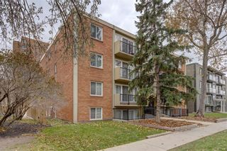 Photo 2: 413 1025 14 Avenue SW in Calgary: Beltline Apartment for sale : MLS®# A1071729