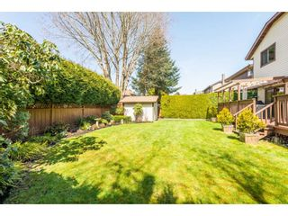 Photo 36: 10643 FRASERGLEN Drive in Surrey: Fraser Heights House for sale (North Surrey)  : MLS®# R2561811