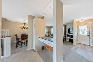 Photo 9: 1051 Pinecliff Drive NE in Calgary: Pineridge Detached for sale : MLS®# A1131055