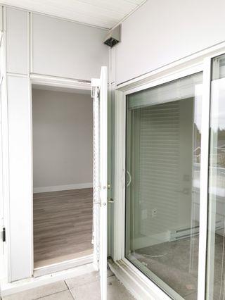 Photo 12:  in Delta: Annieville Condo for sale (N. Delta)  : MLS®# R2556116
