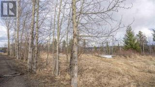 Photo 15: 2455 PARENT ROAD in Prince George: Vacant Land for sale : MLS®# R2548505