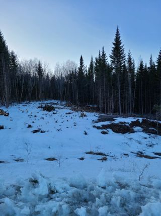 Photo 3: Lot 24 Jorphie Drive in Mount Uniacke: 105-East Hants/Colchester West Vacant Land for sale (Halifax-Dartmouth)  : MLS®# 202104200
