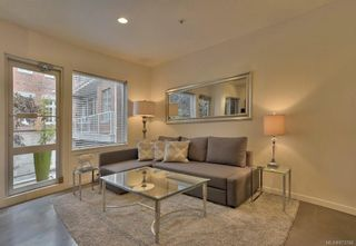 Photo 4: 304 848 Mason St in : Vi Central Park Condo for sale (Victoria)  : MLS®# 873766