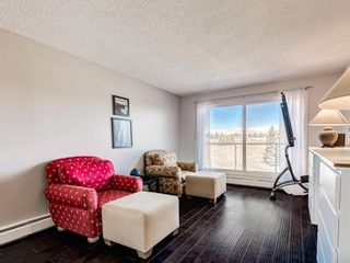 Photo 2: 412A 4455 Greenview Drive NE in Calgary: Greenview Apartment for sale : MLS®# A1101294