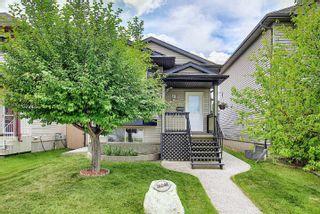 Photo 47: 16044 38 street NW in Edmonton: Zone 03 House for sale : MLS®# E4248402