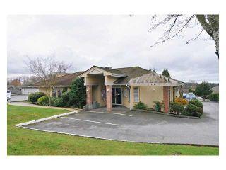 Photo 13: # 117 22515 116TH AV in Maple Ridge: East Central Condo for sale : MLS®# V1033272
