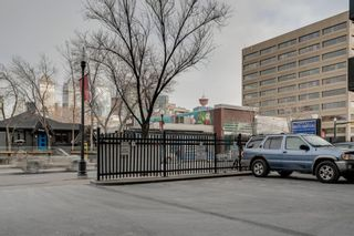 Photo 15: 460 519 17 Avenue SW in Calgary: Cliff Bungalow Apartment for sale : MLS®# A1053452
