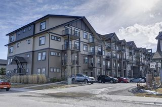 Photo 2: 419 117 Copperpond Common SE in Calgary: Copperfield Apartment for sale : MLS®# A1085904