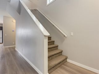 Photo 22: 107 Skyview Point Crescent NE in Calgary: Skyview Ranch Detached for sale : MLS®# A1048632