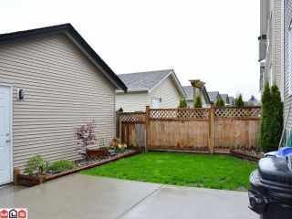 Photo 9: 18865 67A Avenue in Surrey: Clayton House for sale (Cloverdale)  : MLS®# F1210481