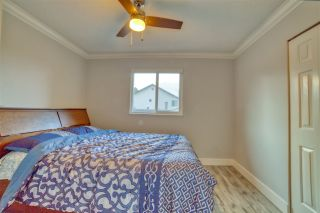 Photo 14: 20117 50 Avenue in Langley: Langley City House for sale : MLS®# R2542736