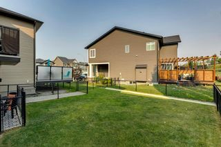 Photo 45: 208 Sunset View: Cochrane Detached for sale : MLS®# A1136470