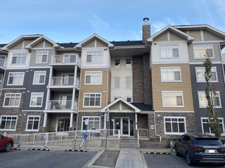 Main Photo: 2213 155 Skyview Ranch Way NE in Calgary: Skyview Ranch Apartment for sale : MLS®# A1153751
