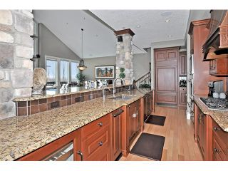 Photo 10: 18 DISCOVERY VISTA Point(e) SW in Calgary: Discovery Ridge House for sale : MLS®# C4018901