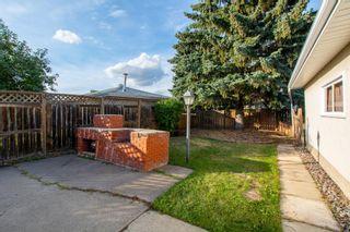 Photo 46: 11428 37B Avenue in Edmonton: Zone 16 House for sale : MLS®# E4262550