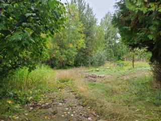 Photo 6: 4453 MOUNTAIN VIEW Road in McBride: McBride - Town Land for sale (Robson Valley (Zone 81))  : MLS®# R2616224