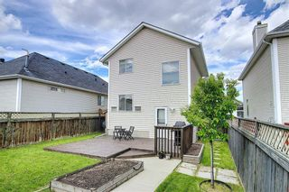 Photo 41: 47 INVERNESS Grove SE in Calgary: McKenzie Towne Detached for sale : MLS®# C4301288