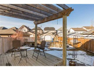 Photo 19: 449 ELGIN Way SE in Calgary: McKenzie Towne Residential Detached Single Family for sale : MLS®# C3653547
