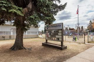 Photo 42: 12002 41 Street in Edmonton: Zone 23 House for sale : MLS®# E4239522
