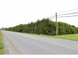 """Photo 2: 7200 216TH Street in Langley: Willoughby Heights Land for sale in """"Milner"""" : MLS®# F1411651"""