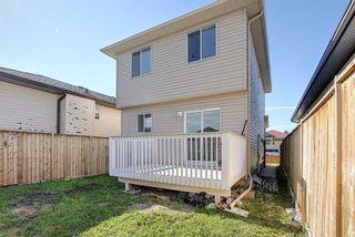 Photo 25: 254 Tarawood Close NE in Calgary: Taradale Detached for sale : MLS®# A1015815