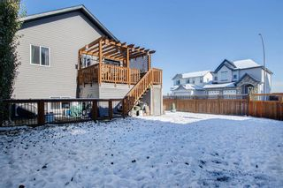 Photo 26: 19 Dallaire Drive: Carstairs Detached for sale : MLS®# A1044807