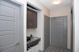 Photo 31: 404 1004 ROSENTHAL Boulevard in Edmonton: Zone 58 Condo for sale : MLS®# E4250933