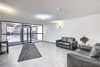 Photo 27: 606 1213 13 Avenue SW in Calgary: Beltline Apartment for sale : MLS®# A1080886