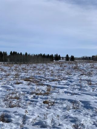 Photo 7: 298086 27 Street W: Rural Foothills County Residential Land for sale : MLS®# A1067248