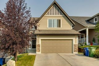 Photo 47: 208 Sunset View: Cochrane Detached for sale : MLS®# A1136470